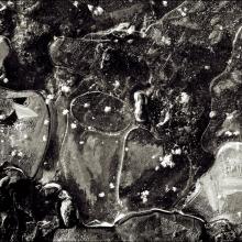 Abstrakt#17