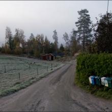 Tomas gård