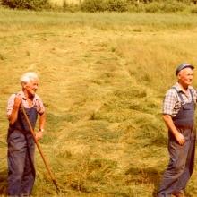 Bertil och Hugo