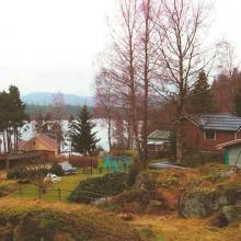 Kaiiros röda ros – vårt hus 1998