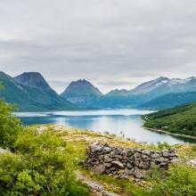 Nesnaveien - Nordnorge